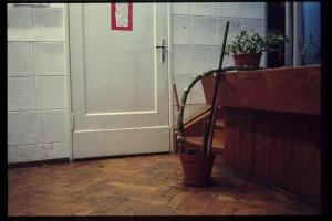 trupa w synagodze 7, foto Jarosław Orłowski